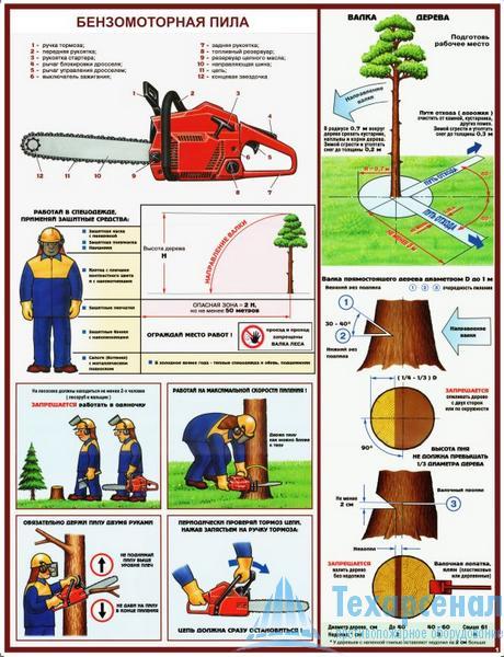petrol_saw_1 Комплект плакатов Бензомоторная пила. Безопасность работ на лесосеке: купить в Москве   цена от 610 руб. в магазине «Техарсенал»