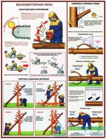 petrol_saw_2_221x286 Комплект плакатов Бензомоторная пила. Безопасность работ на лесосеке: купить в Москве   цена от 610 руб. в магазине «Техарсенал»